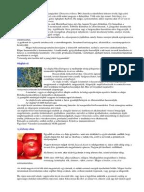 Petra Neumayer_Termeszetes Antibiotikumok