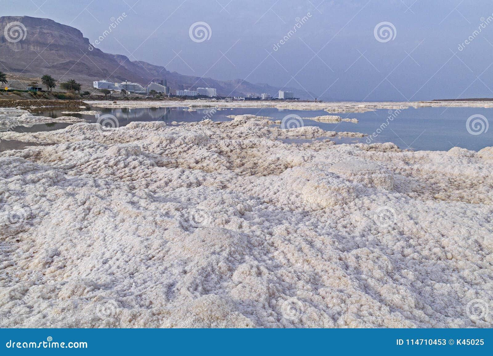 The Spa Club Hotel Dead Sea, Ein Bokek - Értékelések