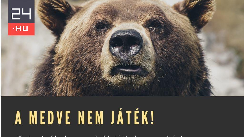 pikkelysömör kezelése tó medve