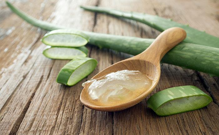 pikkelysömör kezelése aloe juice-val hogyan lehet meggygyulni a testen s a fejn