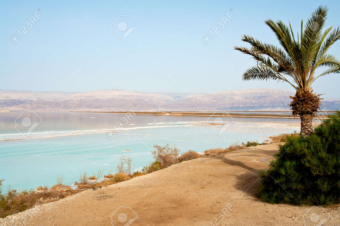 Dead Sea Psoriasis Resorts)